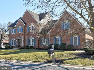 Single Family Home For Sale: 1250 Belle Meade Drive