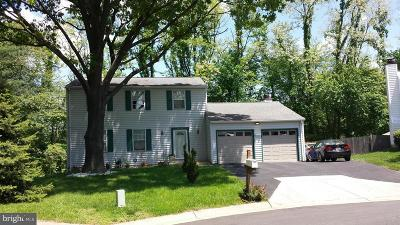 Gaithersburg Single Family Home For Sale: 20125 Green Run Court