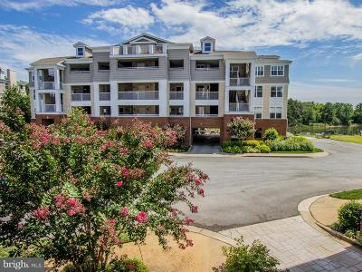 Dowell Condo For Sale: 612 Oyster Bay Place #202
