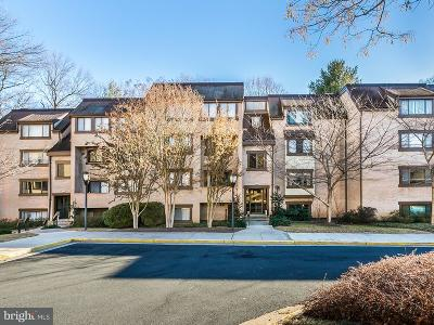 Reston Condo For Sale: 1669 Parkcrest Circle #201B