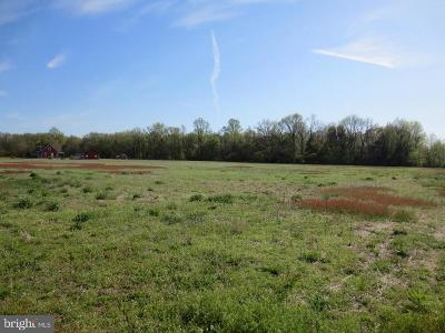 Chestertown Residential Lots & Land For Sale: 112 Pine Tree Road