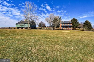 Manheim Single Family Home For Sale: 3496 Meadow View Road