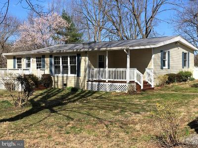Rappahannock County Single Family Home For Sale: 132 Ashby Road