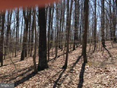 Baltimore County Residential Lots & Land For Sale: Piney Hill Road