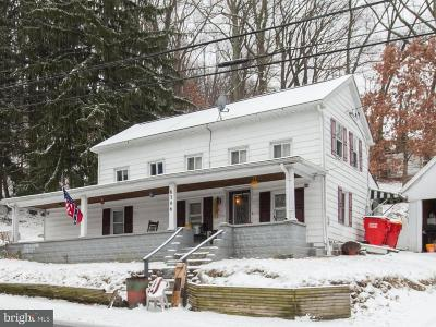 Boonsboro Single Family Home For Sale: 6386 Old National Pike