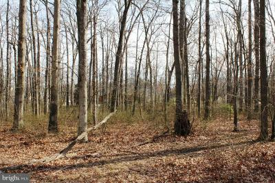 Middle River Residential Lots & Land For Sale: Bird River Road