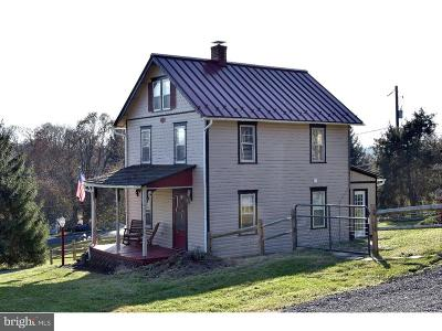 Parkesburg Single Family Home For Sale: 529 McCalls Ferry Road