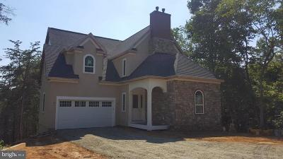 Aldie Single Family Home For Sale: 39163 Aldie Road #LOT 5