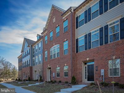 Pikesville Townhouse For Sale: 34 Wedge Way