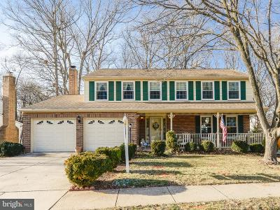 Herndon Single Family Home For Sale: 12508 Cliff Edge Drive