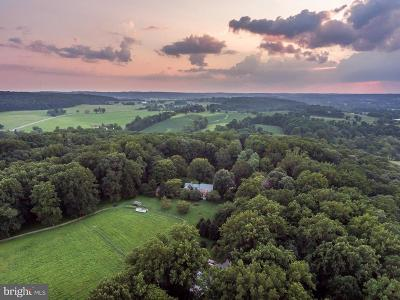 Reisterstown Single Family Home For Sale: 13601 Mantua Mill Road