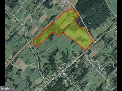 Residential Lots & Land For Sale: 725 Mount Olive Road