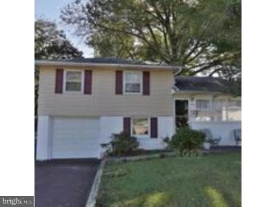 Lansdale Single Family Home For Sale: 555 Squirrel Lane