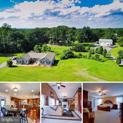Culpeper County Single Family Home For Sale: 20466 Little Lignum Way