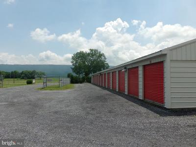 Commercial For Sale: 3223 Old Valley Pike