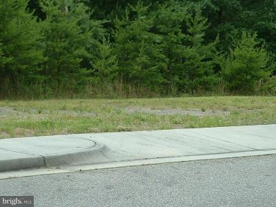 Shenandoah County Residential Lots & Land For Sale: Creek Valley - Lot 11 Drive