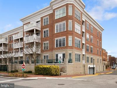 Woodbridge, Dumfries, Lorton Condo For Sale: 525 Belmont Bay Drive #305