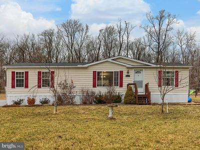 Dillsburg Single Family Home For Sale: 417 Old York Road
