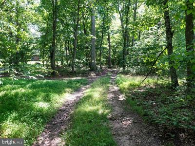 Birdsboro Residential Lots & Land For Sale: White Bear Road