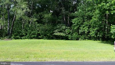 Charlestown, North East Residential Lots & Land For Sale: 2 Bennett Avenue