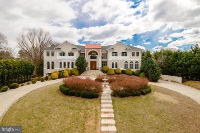 McLean Single Family Home For Sale: 1383 Woodside Drive