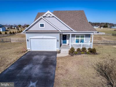 Single Family Home Under Contract: 20397 Spangler Drive