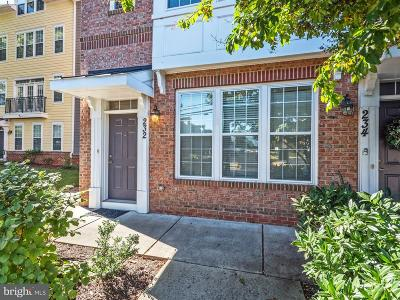 Gaithersburg Townhouse For Sale: 232 N Summit Avenue #26