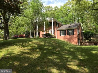 Single Family Home For Sale: 517 Cobey Drive