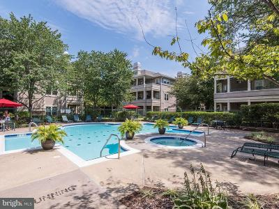 Reston Condo For Sale: 12000 Taliesin Place #23