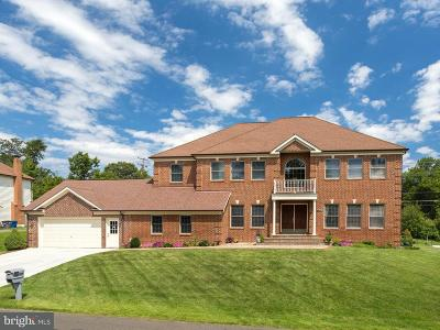 Annandale Single Family Home For Sale: 4000 Downing Street
