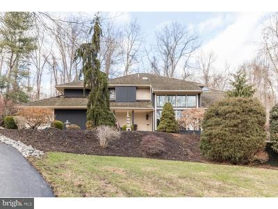 Newtown Single Family Home For Sale: 3 Lakeview Place