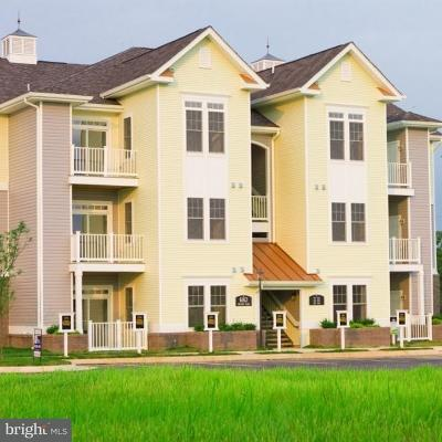Fauquier County Townhouse Active Under Contract: 6163 Willow Place #104