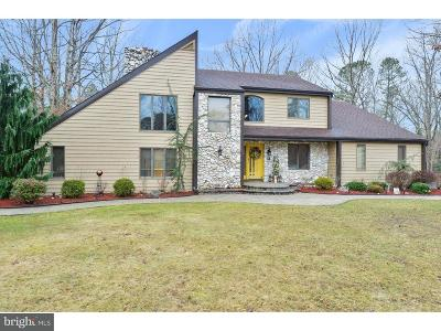 Atlantic County Single Family Home For Sale: 229 Maple Terrace