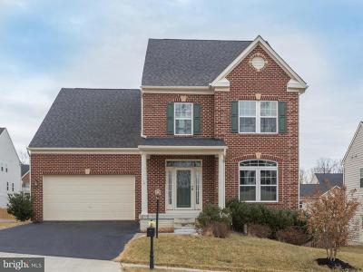 Leesburg Single Family Home Active Under Contract: 40640 Banshee Drive