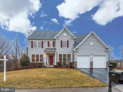 Fairfax County, Stafford County, Prince William County Single Family Home For Sale: 3680 Stonewall Manor Drive