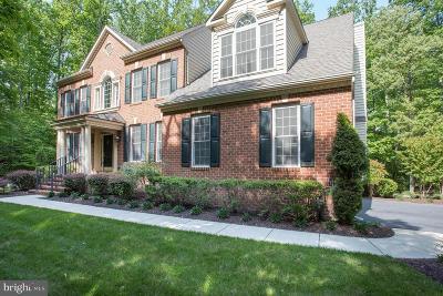Davidsonville Single Family Home For Sale: 601 Indian Point Court