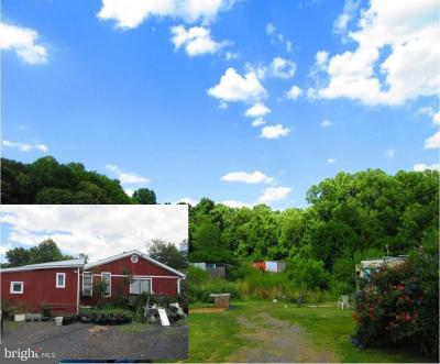 Anne Arundel County Farm For Sale: 1294 Defense Highway