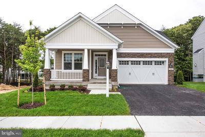 Single Family Home For Sale: Jersey Bronze Way
