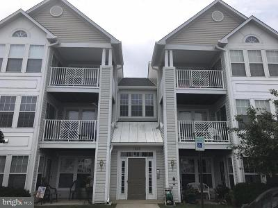 Odenton Condo Under Contract: 2443 Blue Spring Court #203