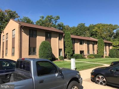 Burke, Springfield Condo For Sale: 8356 Traford Lane