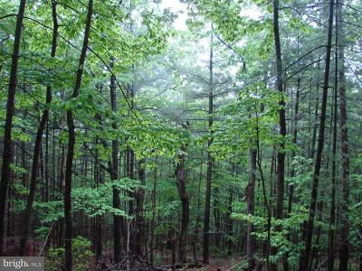 Page County Residential Lots & Land For Sale: Piney Mt. Rd.