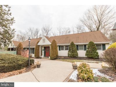 Bucks County Commercial For Sale: 140 E Butler Avenue #4
