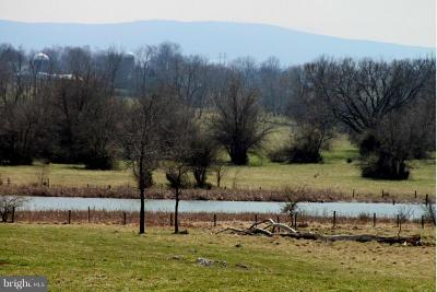 Clarke County, Harrisonburg City, Page County, Rockingham County, Shenandoah County, Warren County, Winchester City Residential Lots & Land For Sale: Allen Road