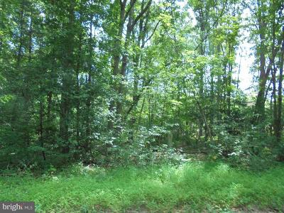 Orange County Residential Lots & Land For Sale: New Hampshire Road #31