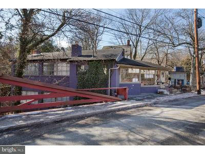Bucks County Commercial For Sale: 27 W Mechanic Street