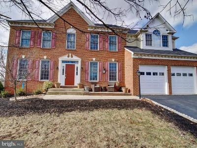 Leesburg Single Family Home For Sale: 42922 Palliser Court