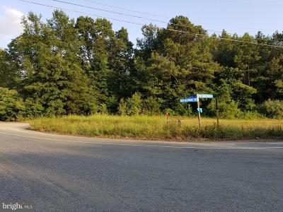 Caroline County Commercial For Sale: Nelson Hill Road