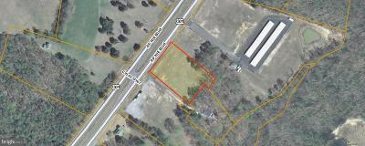 Caroline County Commercial For Sale: A P Hill Boulevard