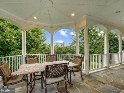 Paeonian Springs Single Family Home For Sale: 16777 Old Waterford Road