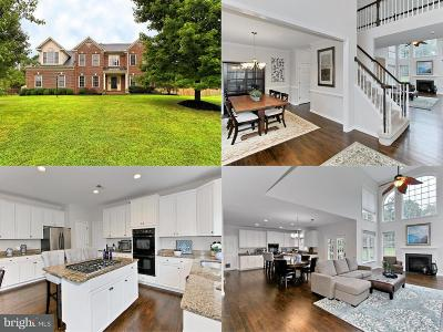 Ashburn Single Family Home For Sale: 21357 Cameron Hunt Place